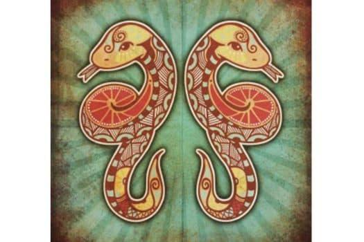 Horoscope de Gémeaux :