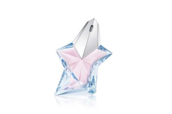 La part d'Angel, Mugler